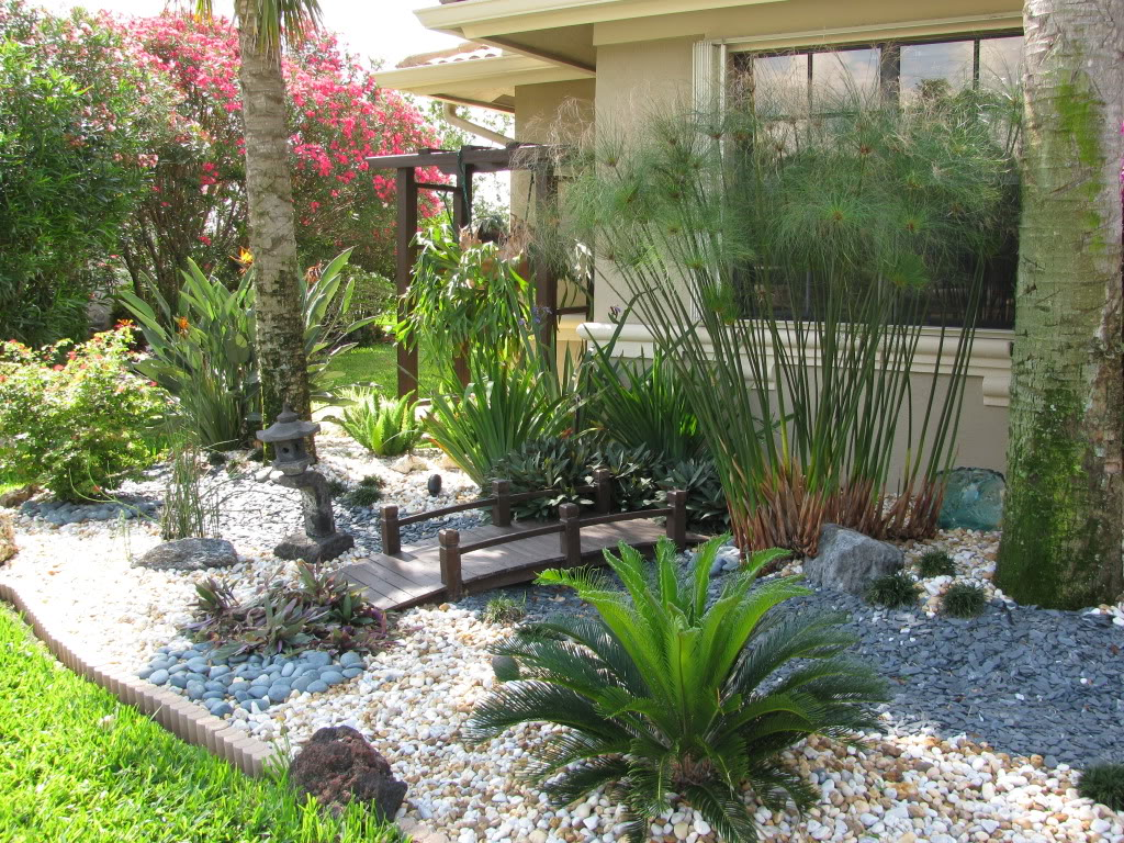 Life short pool landscaping pictures florida for Florida landscape design