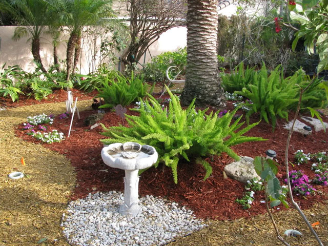 Small Yard Landscaping on drought tolerant hillside landscaping