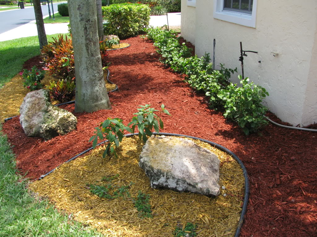 Whinter Landscaping Ideas In South Florida